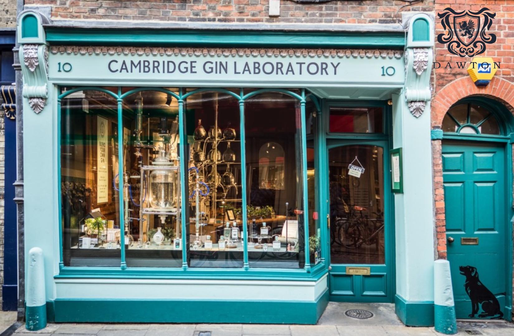 gin | Dawton Properties